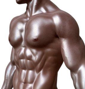 bodybuilder's body